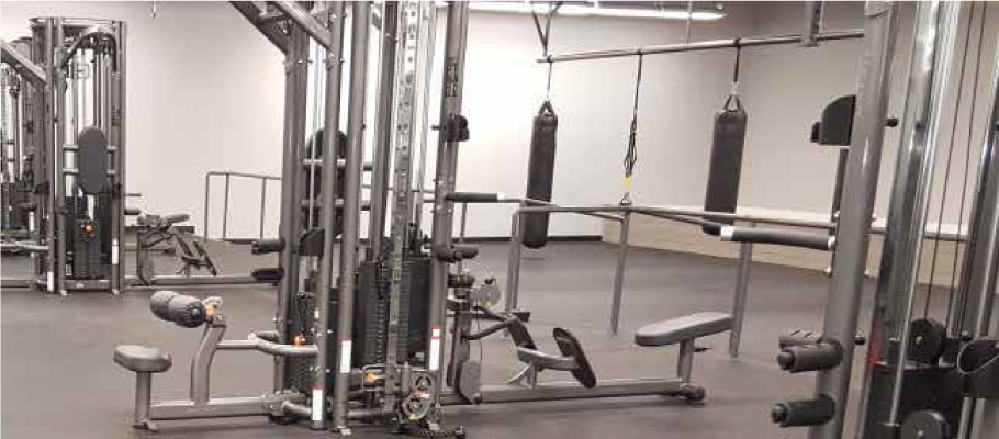 An Image of the Tampa, FL Powerhouse Gym Location
